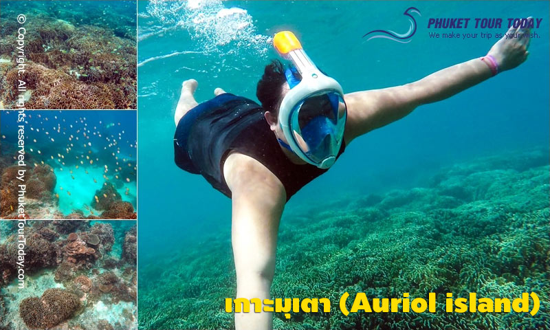 เกาะมุเตา (Auriol Island)
