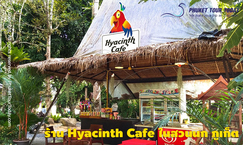ร้าน Hyacinth Cafe สวนนก ภูเก็ต