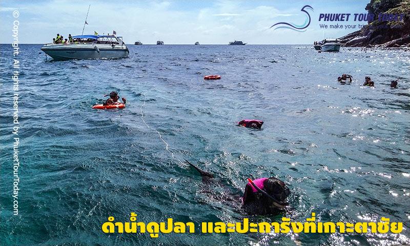 ดำน้ำดูปลา และปะการังที่เกาะตาชัย